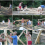 Eco-building Workshop, Day 3: Woodshed construction